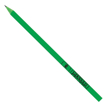 Recycled CD Case Pencil - Green